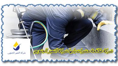 Photo of شركة مكافحة حشرات بابها 0509056373 مع الضمان وخصم 33%