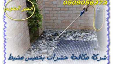 Photo of شركة مكافحة حشرات بخميس مشيط 0509056373 مع الضمان والخصم بدون مغادرة المنزل