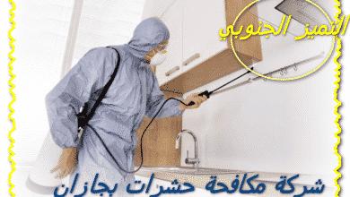 Photo of شركة مكافحة حشرات بجازان 0509056373 مع الخصم والضمان