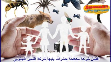 صورة شركة مكافحة حشرات بابها