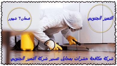 Photo of شركة مكافحة حشرات بمحايل عسير 0509056373 مع الضمان والخصم 33%