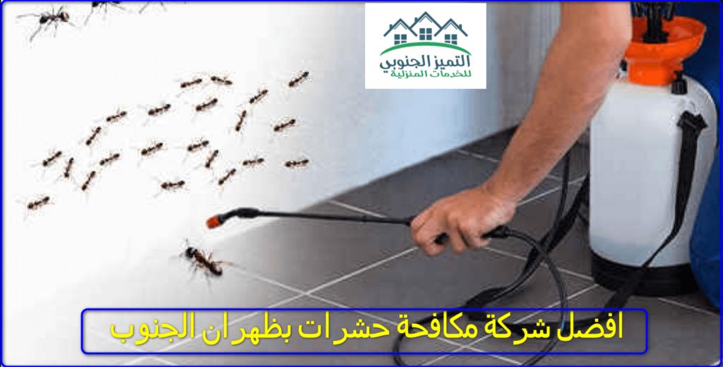 شركة مكافحة حشرات بظهران الجنوب